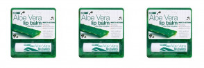 (3 PACK) - Aloe Vera Aloe Vera Lip Balm | 4g | 3 PACK - SUPER SAVER - SAVE MONEY